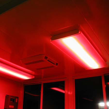 Red night lights help nighttime visibility!